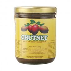 Salicsa Chutney Salicsa 400 gr