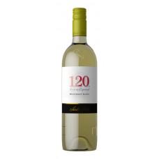 Vino Santa Rita 120 Resreva Blanco Sauvignon Blanc 750 ml